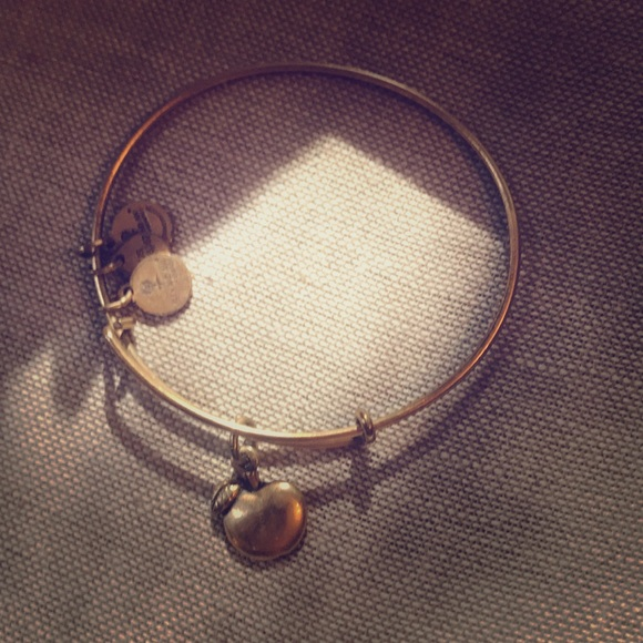 a66b37a6f004a Alex and Ani Apple Charm Bracelet